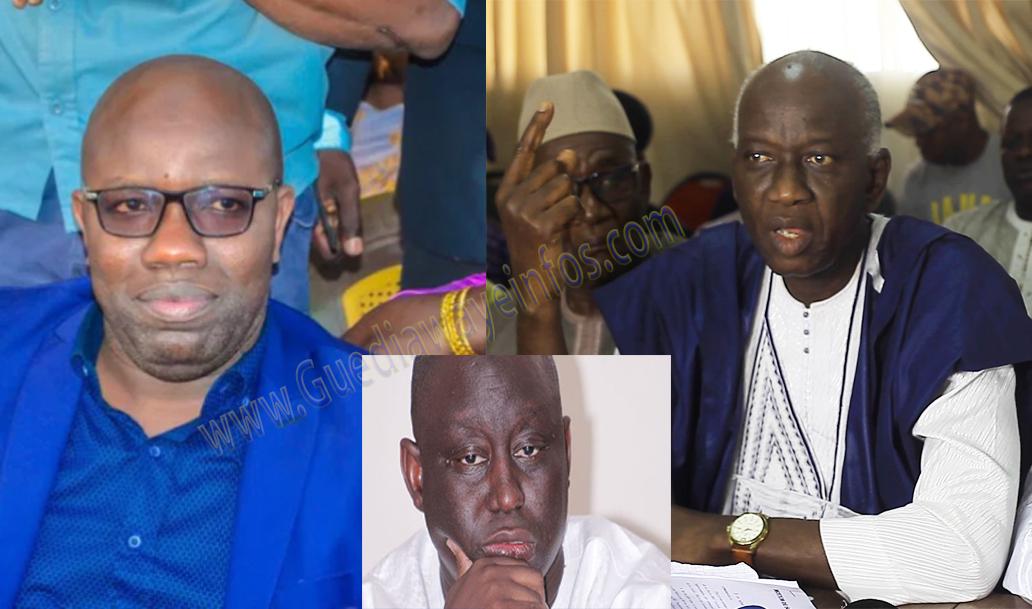 cheikh ndonguo